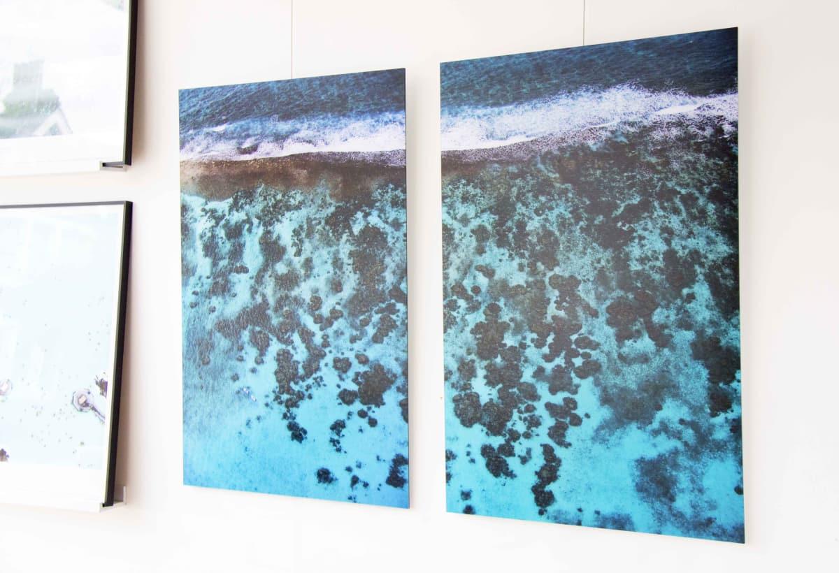 Cades Reef Diptych, 2016