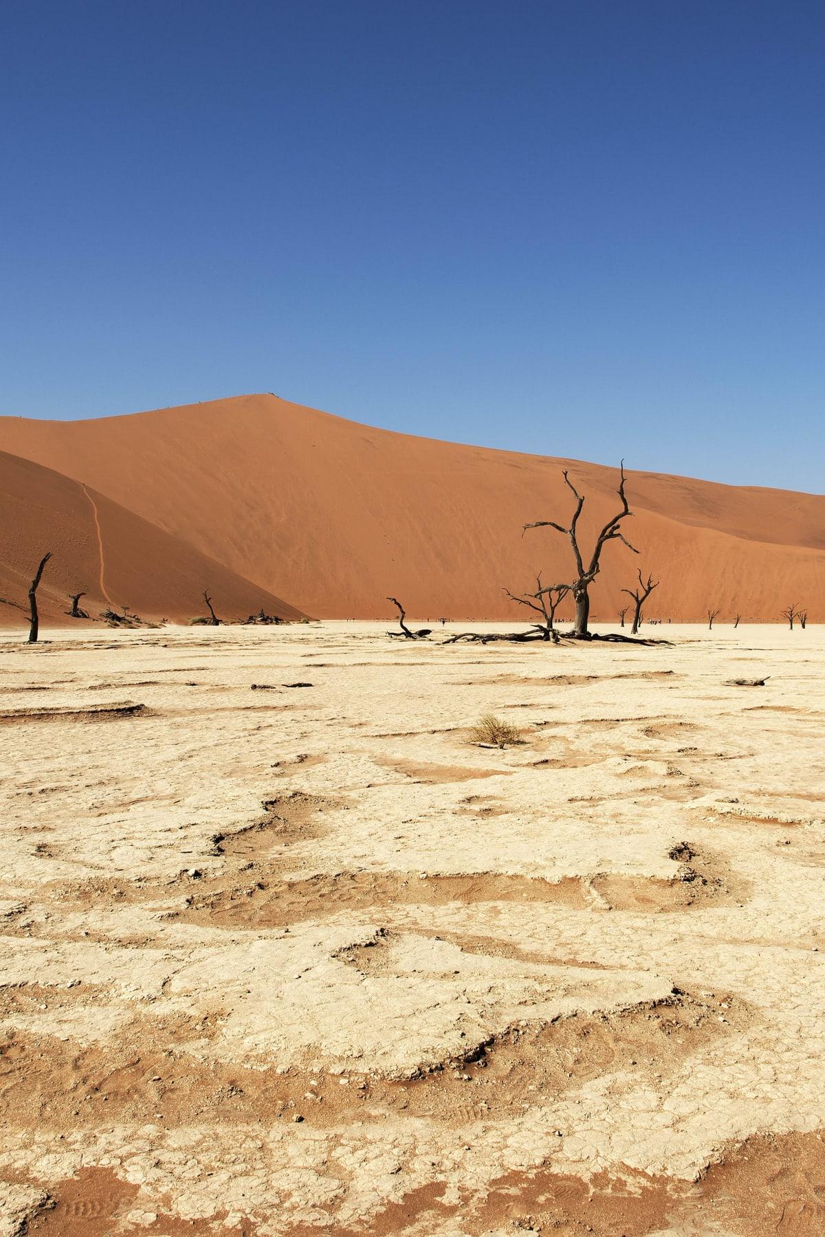 Karen Winnubst: back to Namibia