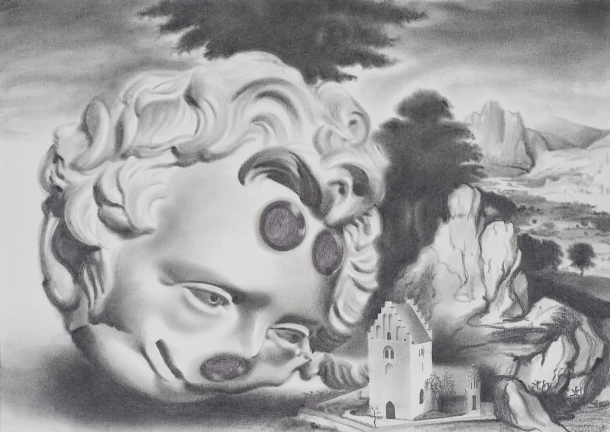 Robert McNally  Does whatever her wants, 2017  Graphite on paper  30 x 42 cm  11 3/4 x 16 1/2 in