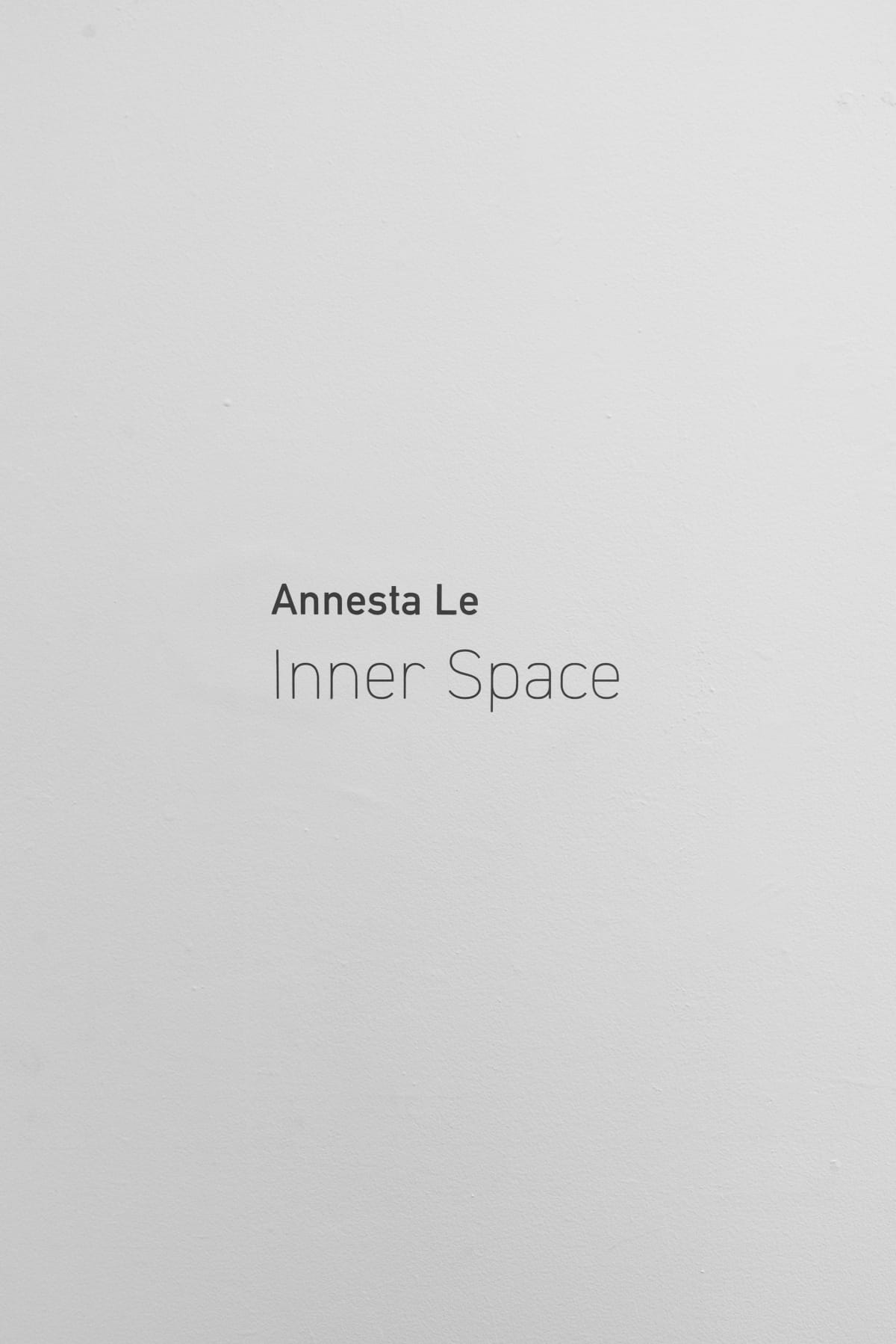Annesta Le Inner Space Wall Text Yi Gallery 2020
