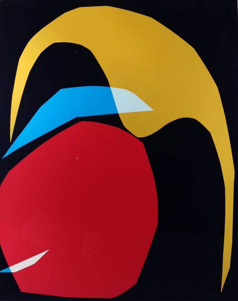 "<span class=""link fancybox-details-link""><a href=""/artists/26-liz-nielsen/works/134-liz-nielsen-bird-in-the-garden-2018/"">View Detail Page</a></span><div class=""artist""><strong>Liz Nielsen</strong></div> <div class=""title""><em>Bird in the Garden</em>, 2018</div> <div class=""medium"">Analogue Chromogenic Photogram on Fujiflex, Unique</div> <div class=""dimensions"">165.1 x 127 cm<br /> 65 x 50 in<br /> Print only</div><div class=""copyright_line"">Copyright Liz Nielsen</div>"