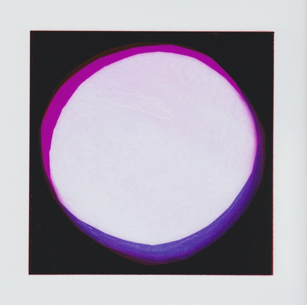 "<span class=""link fancybox-details-link""><a href=""/artists/26-liz-nielsen/works/187-liz-nielsen-moons-aoife-2018/"">View Detail Page</a></span><div class=""artist""><strong>Liz Nielsen</strong></div> <div class=""title""><em>Moons (Aoife) </em>, 2018</div> <div class=""medium"">Analogue Chromogenic Photogram on Fuji Lustre, Unique</div> <div class=""dimensions"">20.3 x 20.3 cm<br /> 8 x 8 in<br /> Print only</div><div class=""copyright_line"">Copyright Liz Nielsen</div>"