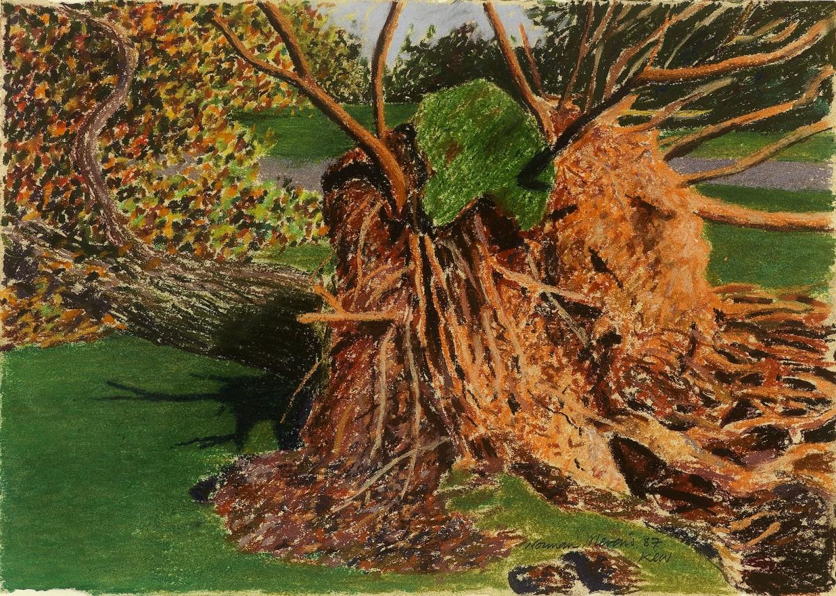 Norman Stevens ARA, Tree, Kew Gardens, 1987 | The Redfern Gallery