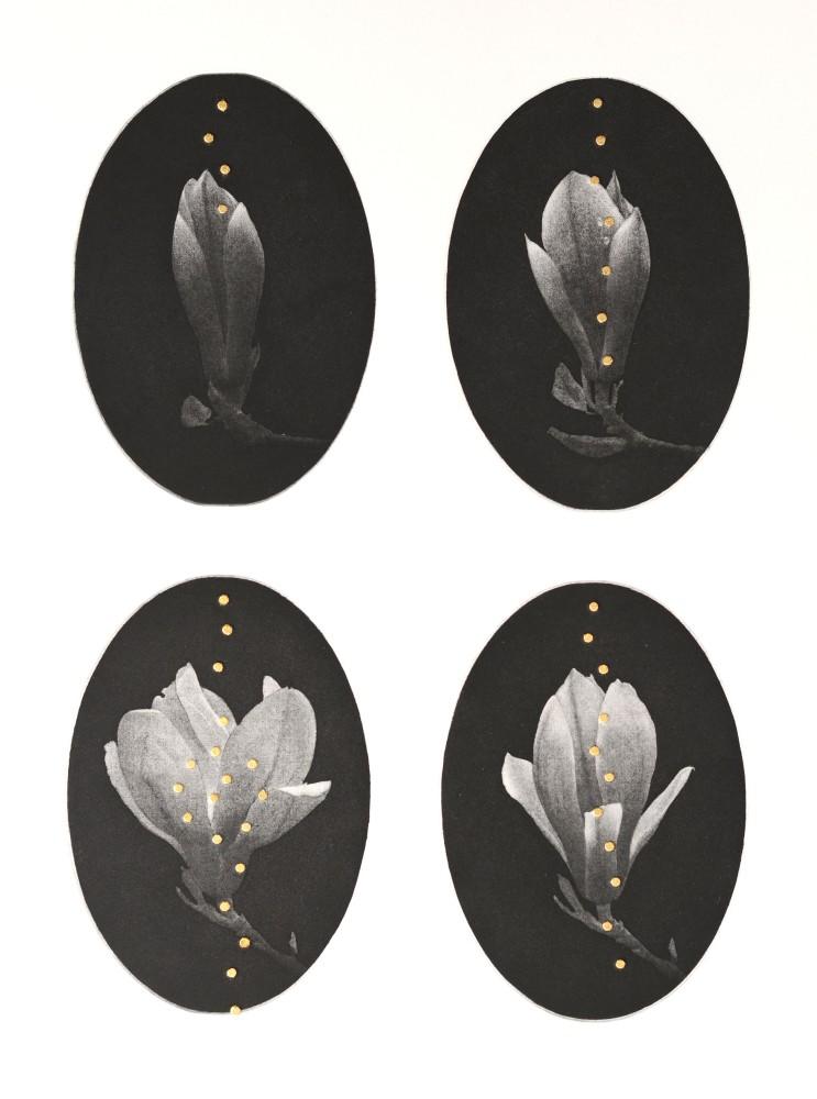 <span class=&#34;link fancybox-details-link&#34;><a href=&#34;/artists/29-emiko-aida-re/works/9367/&#34;>View Detail Page</a></span><div class=&#34;artist&#34;><span class=&#34;artist&#34;><strong>Emiko Aida RE</strong></span></div><div class=&#34;title&#34;><em>Night Bloom</em></div><div class=&#34;medium&#34;>Photo transfer aquatint + Gold gilding</div>