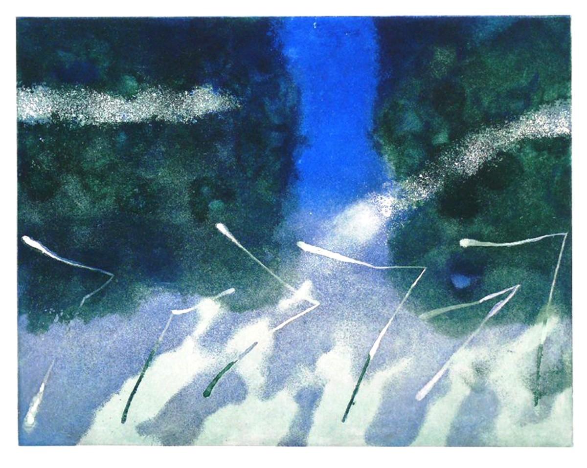 <span class=&#34;link fancybox-details-link&#34;><a href=&#34;/artists/106-dawson-murray-are/works/9547/&#34;>View Detail Page</a></span><div class=&#34;artist&#34;><span class=&#34;artist&#34;><strong>Dawson Murray ARE</strong></span></div><div class=&#34;title&#34;><em>Drifting II</em></div><div class=&#34;medium&#34;>etching</div>