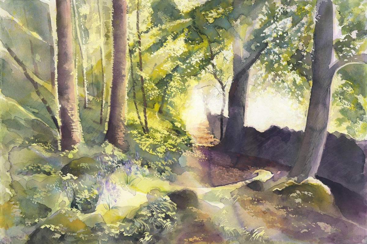 <span class=&#34;link fancybox-details-link&#34;><a href=&#34;/exhibitions/25/works/image_standalone546/&#34;>View Detail Page</a></span><p>Phil Fraser</p><p><em>Woodland Track</em></p>