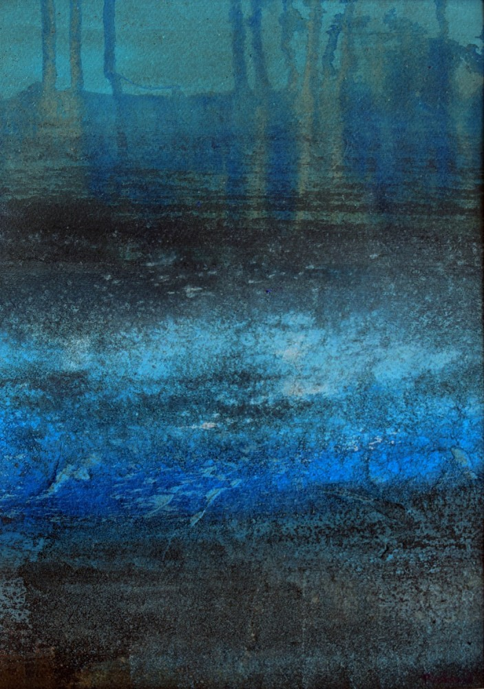 <span class=&#34;link fancybox-details-link&#34;><a href=&#34;/exhibitions/25/works/image_standalone617/&#34;>View Detail Page</a></span><p><span>Robin Richmond</span></p><p><em>Ice Puddle France</em></p>