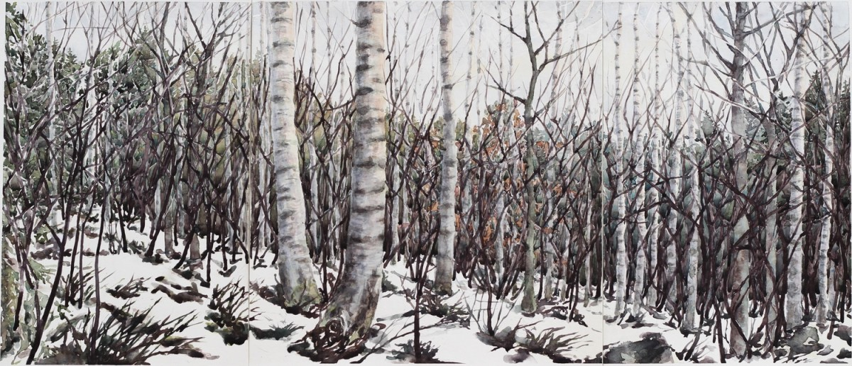 <span class=&#34;link fancybox-details-link&#34;><a href=&#34;/exhibitions/25/works/image_standalone630/&#34;>View Detail Page</a></span><p><span>Caroline Ward-Raatikainen</span></p><p><em>December 1 2017, Vaala, Finland</em></p>