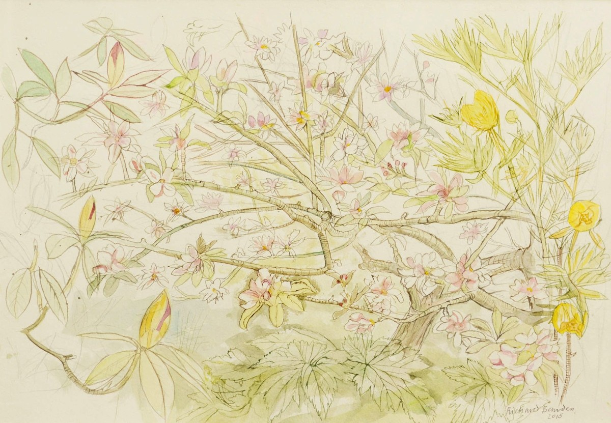 <span class=&#34;link fancybox-details-link&#34;><a href=&#34;/exhibitions/12/works/artworks_standalone9803/&#34;>View Detail Page</a></span><div class=&#34;artist&#34;><span class=&#34;artist&#34;><strong>Richard Bawden</strong></span></div><div class=&#34;title&#34;><em>Apple Blossom </em></div><div class=&#34;medium&#34;>watercolour</div>