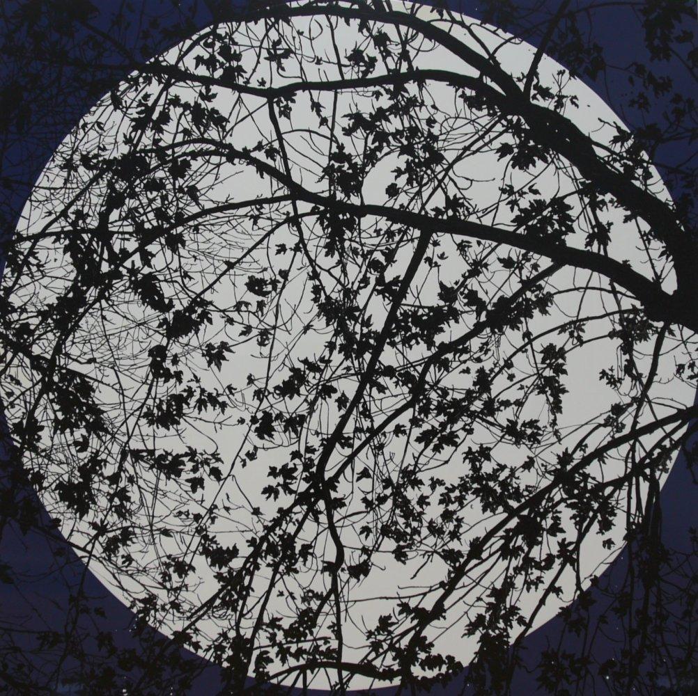 <p>Ian Davenport + Sue Arrowsmith</p><p>Midnight Moonlight 2012</p><p>acrylic and gloss on aluminium</p><p>122 x 122 cms</p>