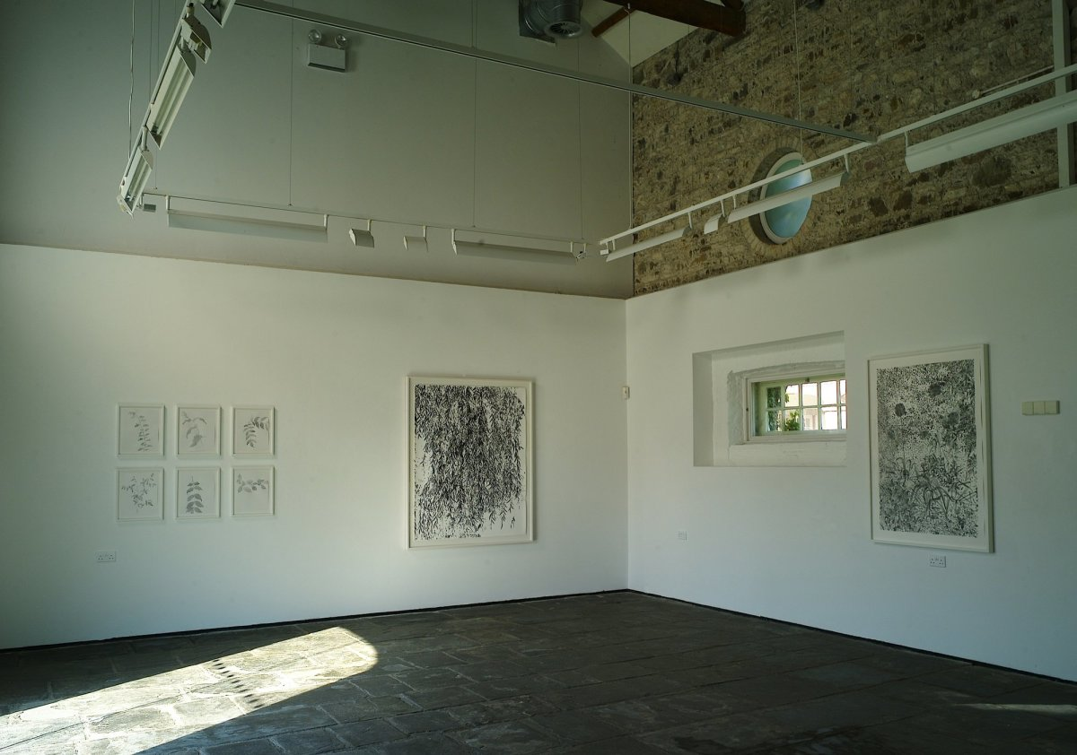 <p>Gallery view</p>
