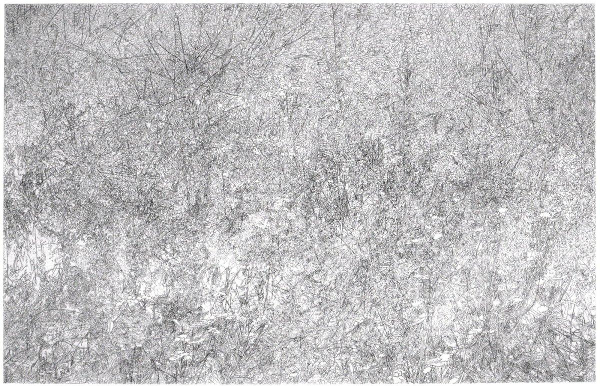 <p>Reserve 2008</p><p>pencil on paper</p><p>101.5 x 137 cms</p>