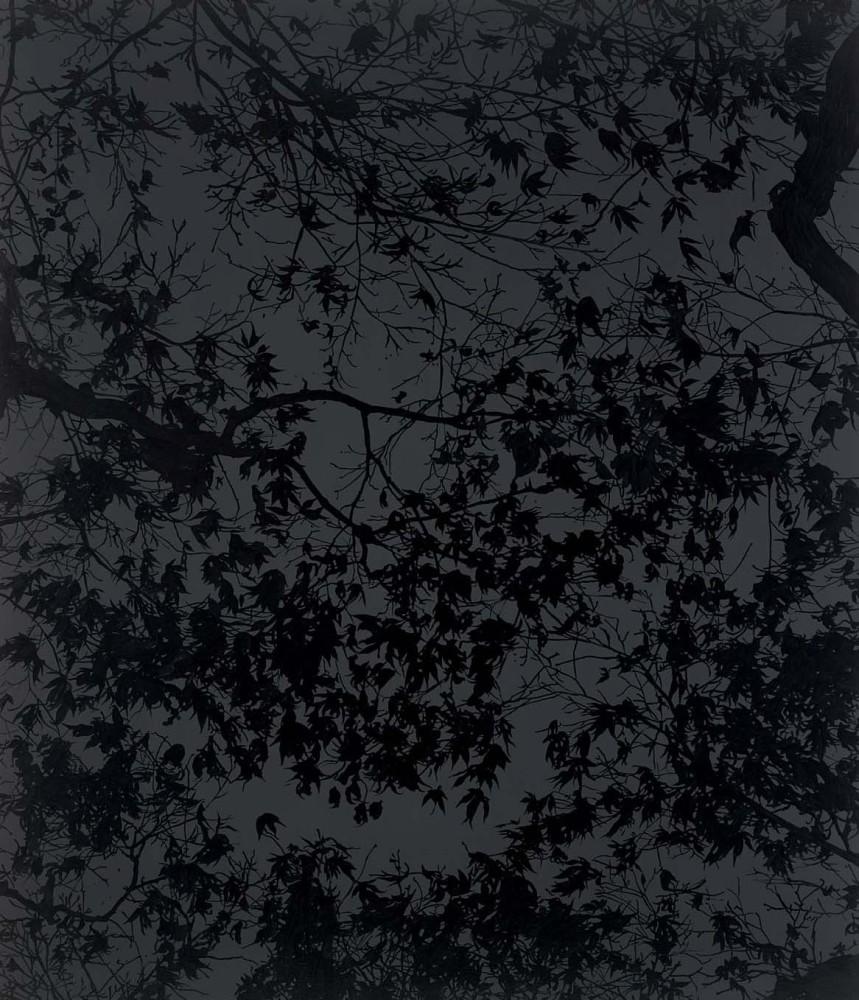 """<div class=""""title""""><em>Enchanted evening</em>, 2013</div><div class=""""medium"""">acrylic on canvas</div><div class=""""dimensions"""">213.5 x 183 cms</div>"""