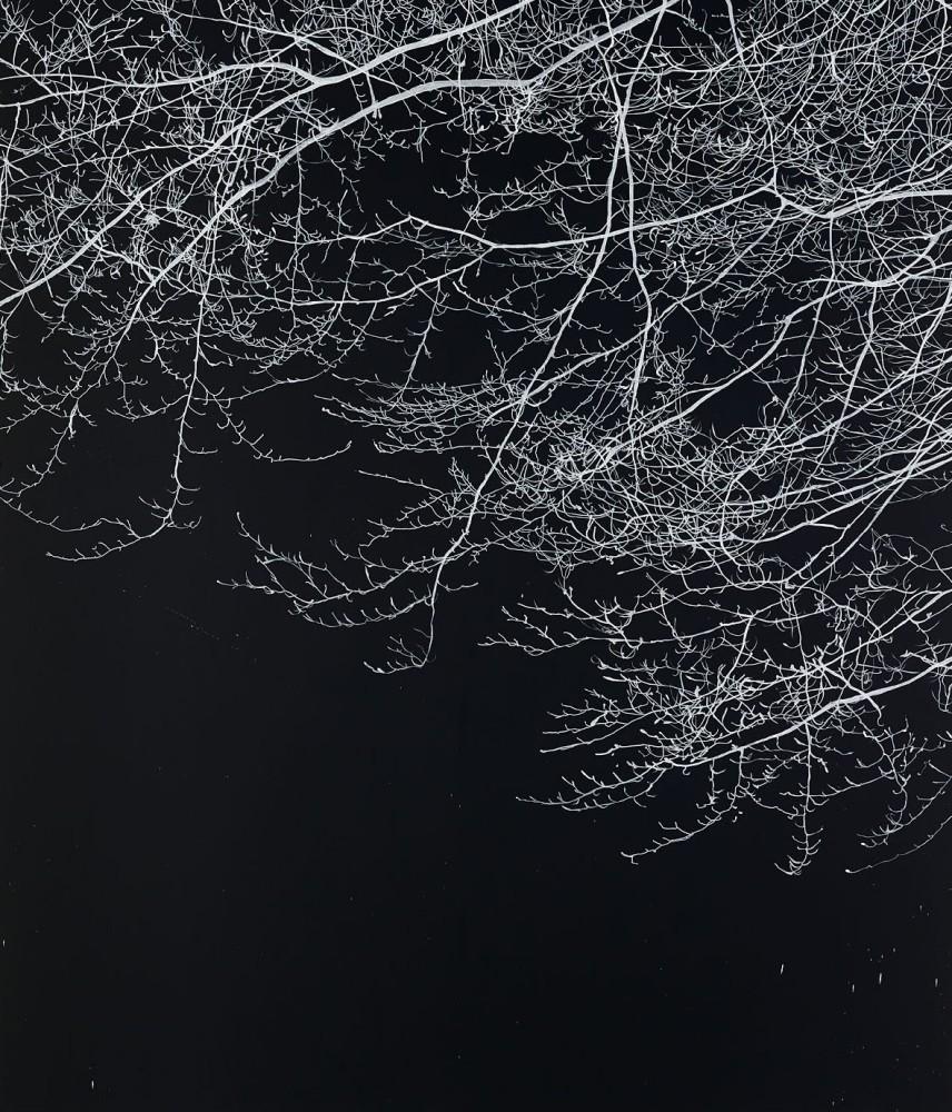 """<div class=""""title""""><em>Fire filled the sky</em>, 2015</div><div class=""""medium"""">Acyrlic on canvas</div><div class=""""dimensions"""">213.5 x 183 cms</div>"""