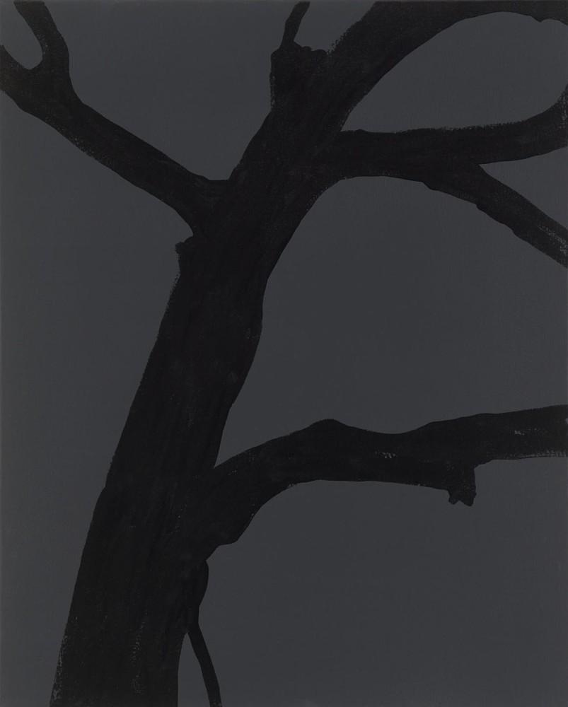 """<div class=""""title""""><em>Whisper from the shadows</em>, 2015</div><div class=""""medium"""">acrylic on canvas</div><div class=""""dimensions"""">76 x 61 cms</div>"""