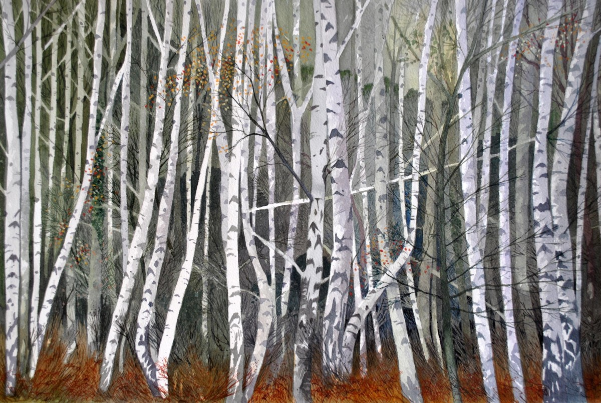 <span class=&#34;link fancybox-details-link&#34;><a href=&#34;/exhibitions/7/works/image_standalone217/&#34;>View Detail Page</a></span><p>Peter Shuttleworth,&#160;<em>Silver Birch, Winter, Millgate Fields</em></p>