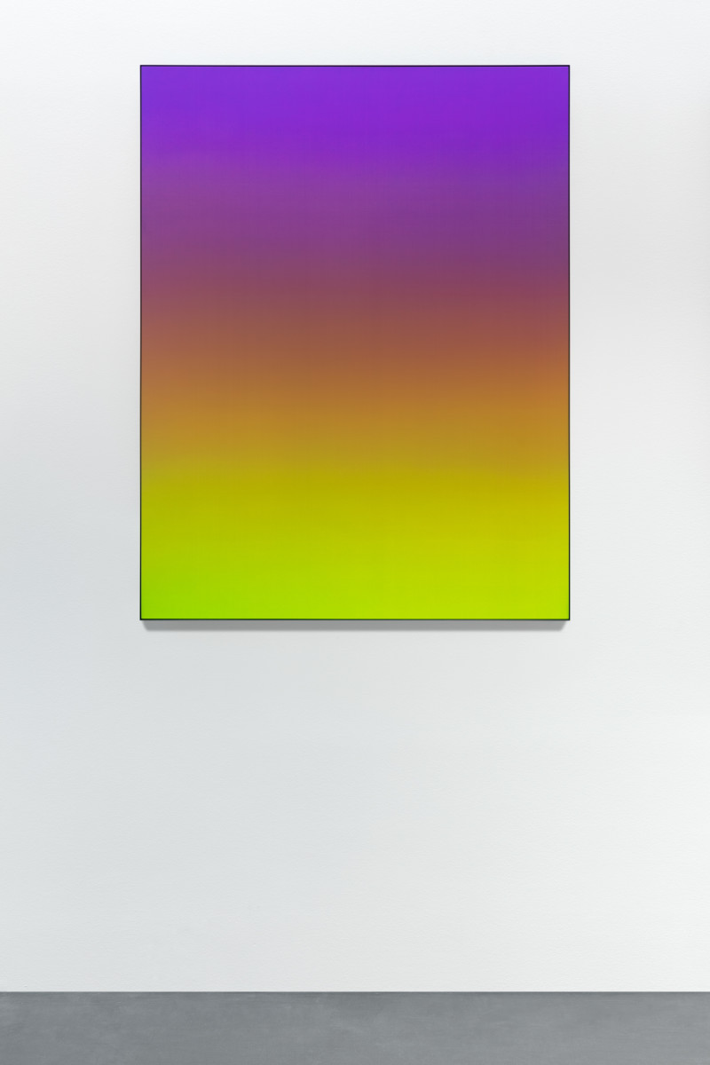 Matti Braun Untitled, 2020 Silk, dye, powder-coated aluminium 130 x 100 cm (51 1/8 x 39 3/8 in)