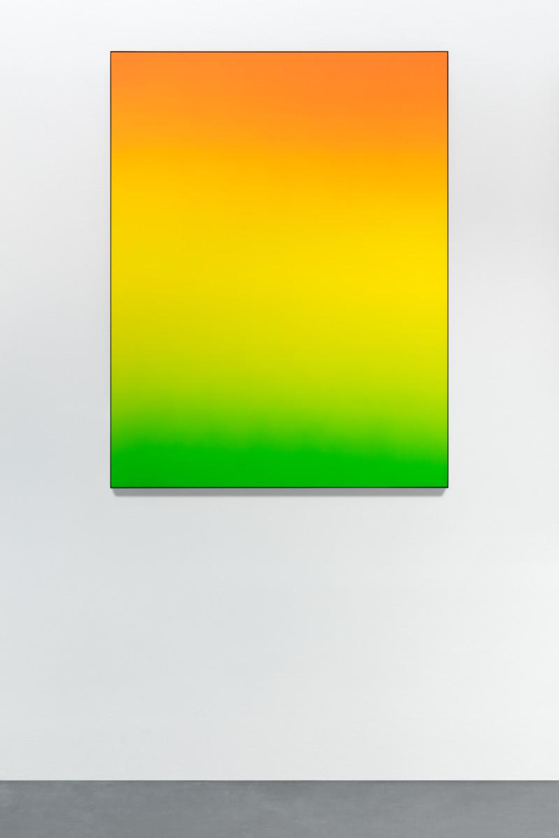 Matti Braun Untitled, 2020 Seide, Textilfarbe, pulverbeschichtetes Aluminium 130 x 100 cm (51 1/8 x 39 3/8 in)
