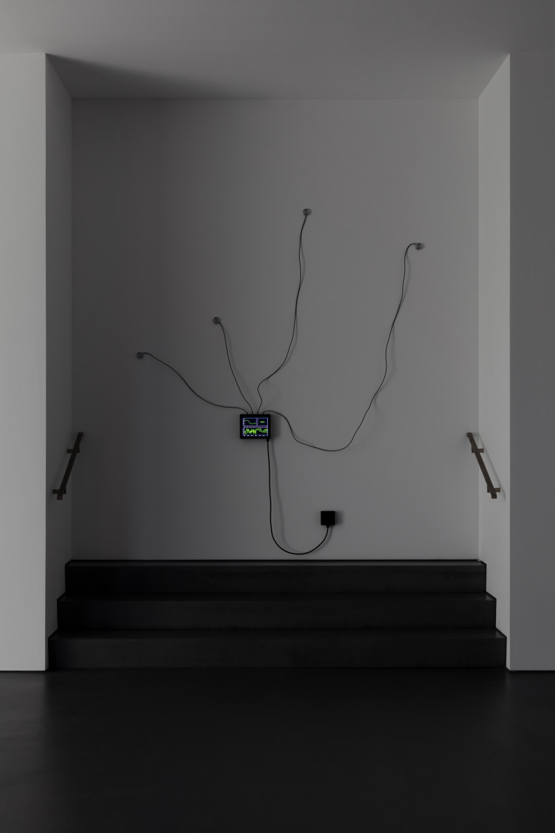 Etienne Chambaud Fever (Harlequin Malaria), 2019 Computer simulation, heating device, sensors, aluminum, cables Dimensions variable