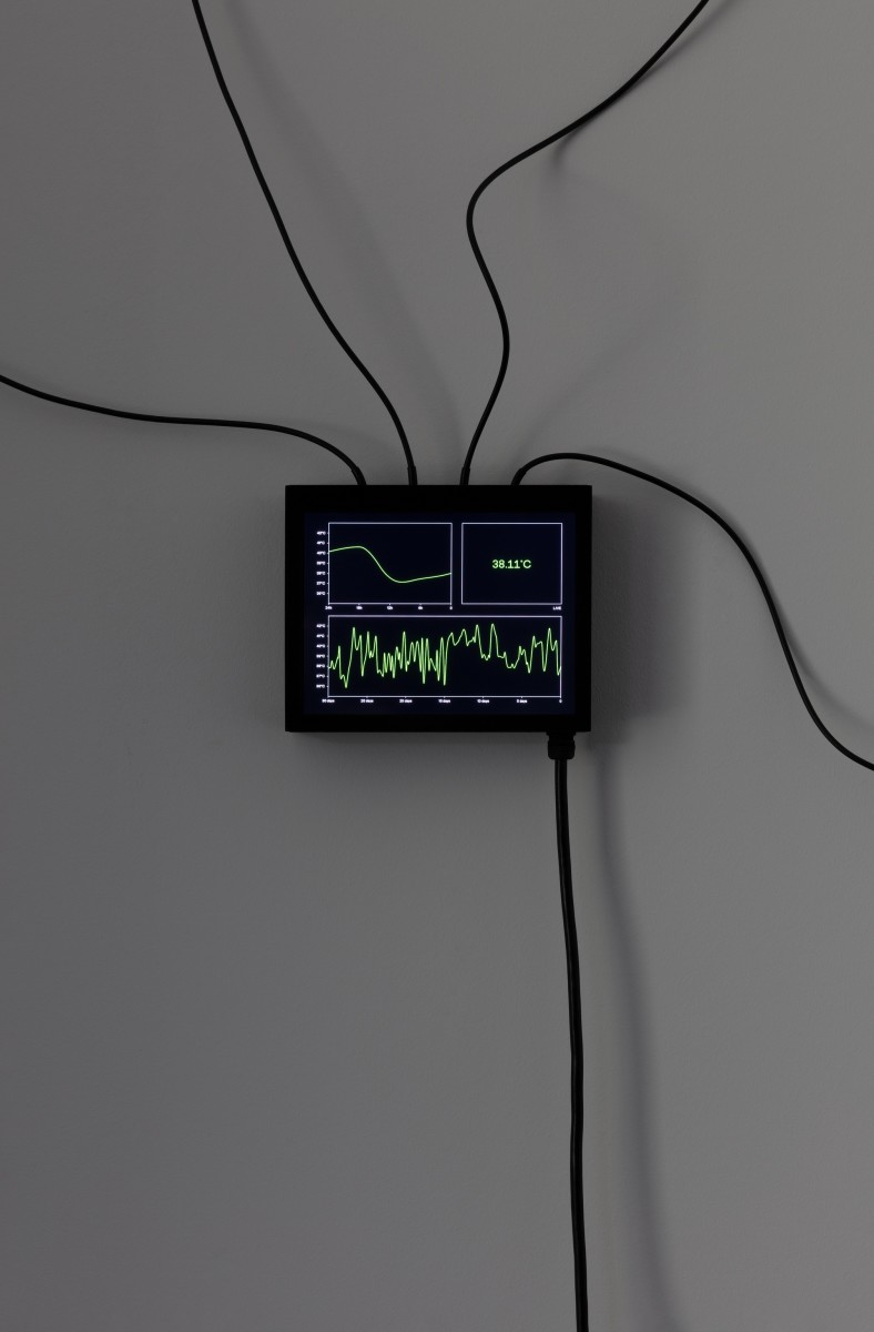 Detail: Etienne Chambaud, Fever (Harlequin Malaria), 2019, computer simulation, heating device, sensors, aluminum, cables, dimensions variable. Photo © Andrea Rossetti