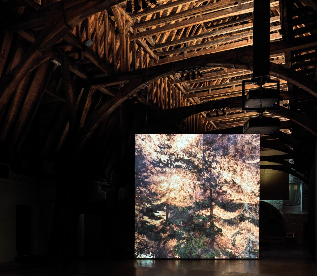 David Claerbout Wildfire (meditation on fire), 2019-2020 Single channel video projection, 3D animation (stereo audio, color) Duration: 24 min Edition of 7