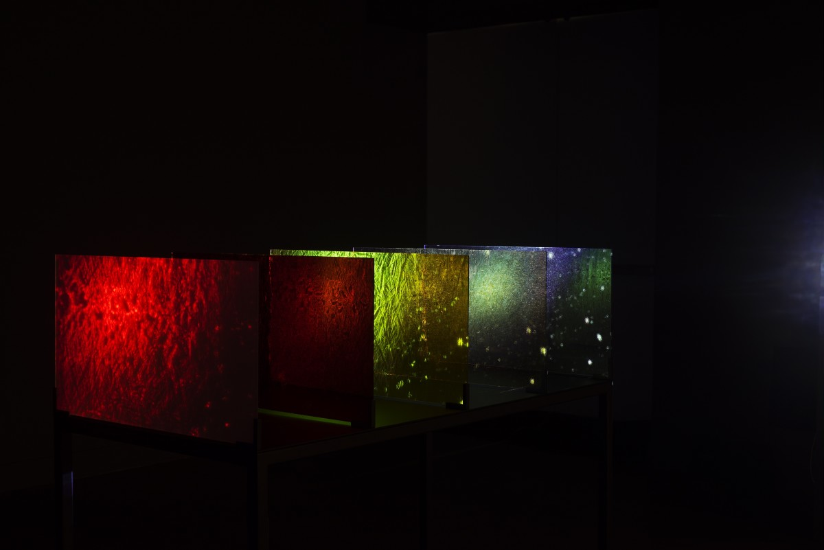 Rosa Barba, The Color Out of Space, 2015, HD video (color, sound), 5 colored glass filters, steel base table, installation dimensions variable, 36 min, edition of 3. Exhibition views: MIT List Visual Arts Center, Cambridge, MA, 2015. Photos © Peter Harris