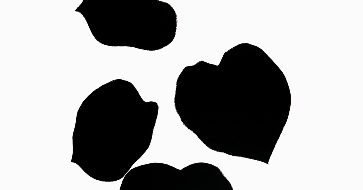 Ellsworth Kelly Plant Lithographs From The Artists