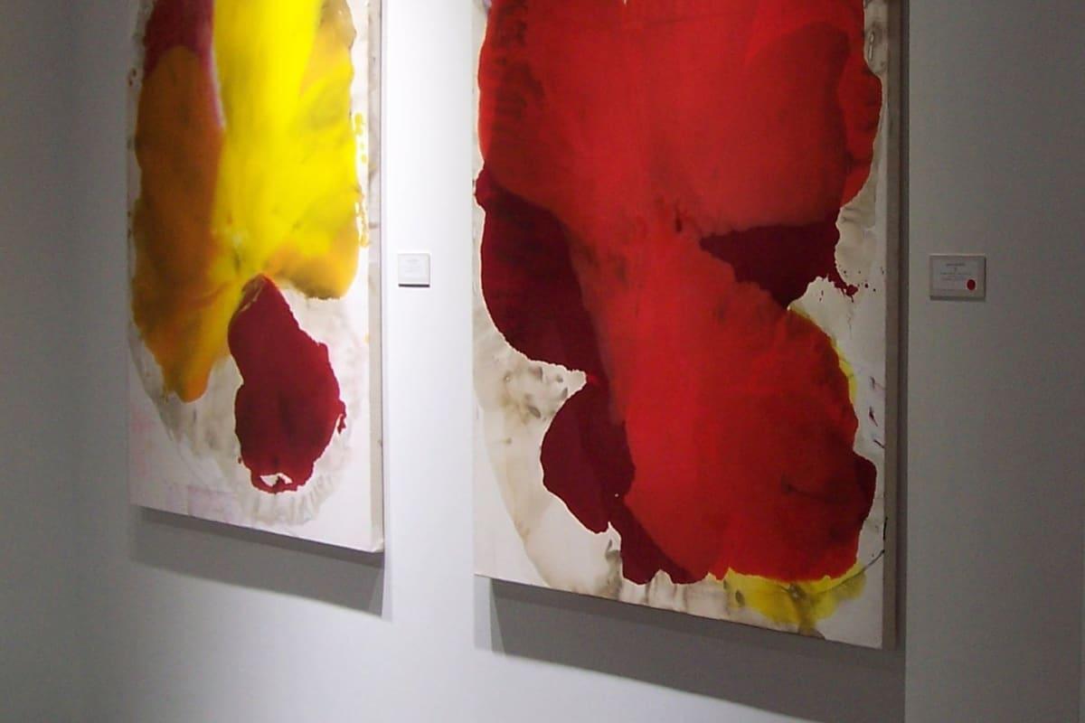 Dirk De Bruycker exhibition