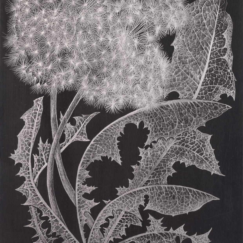 Margot Glass