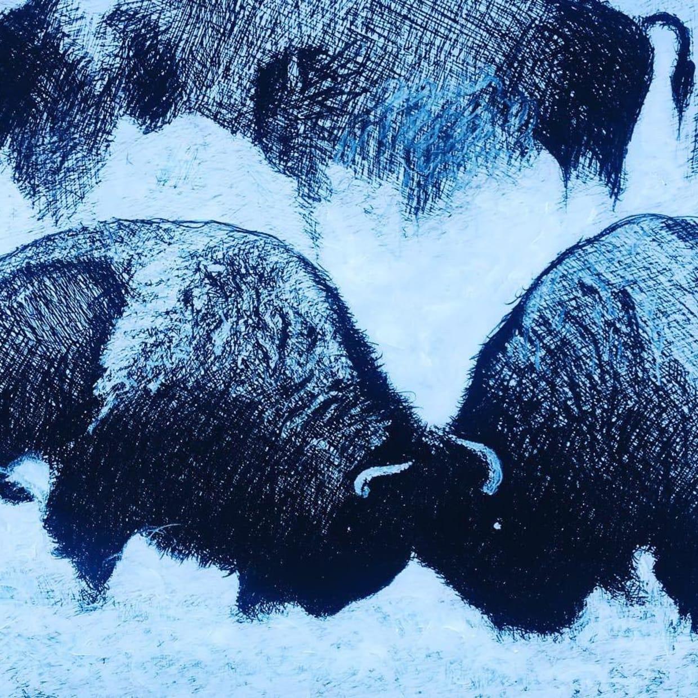 Bulls & Bison