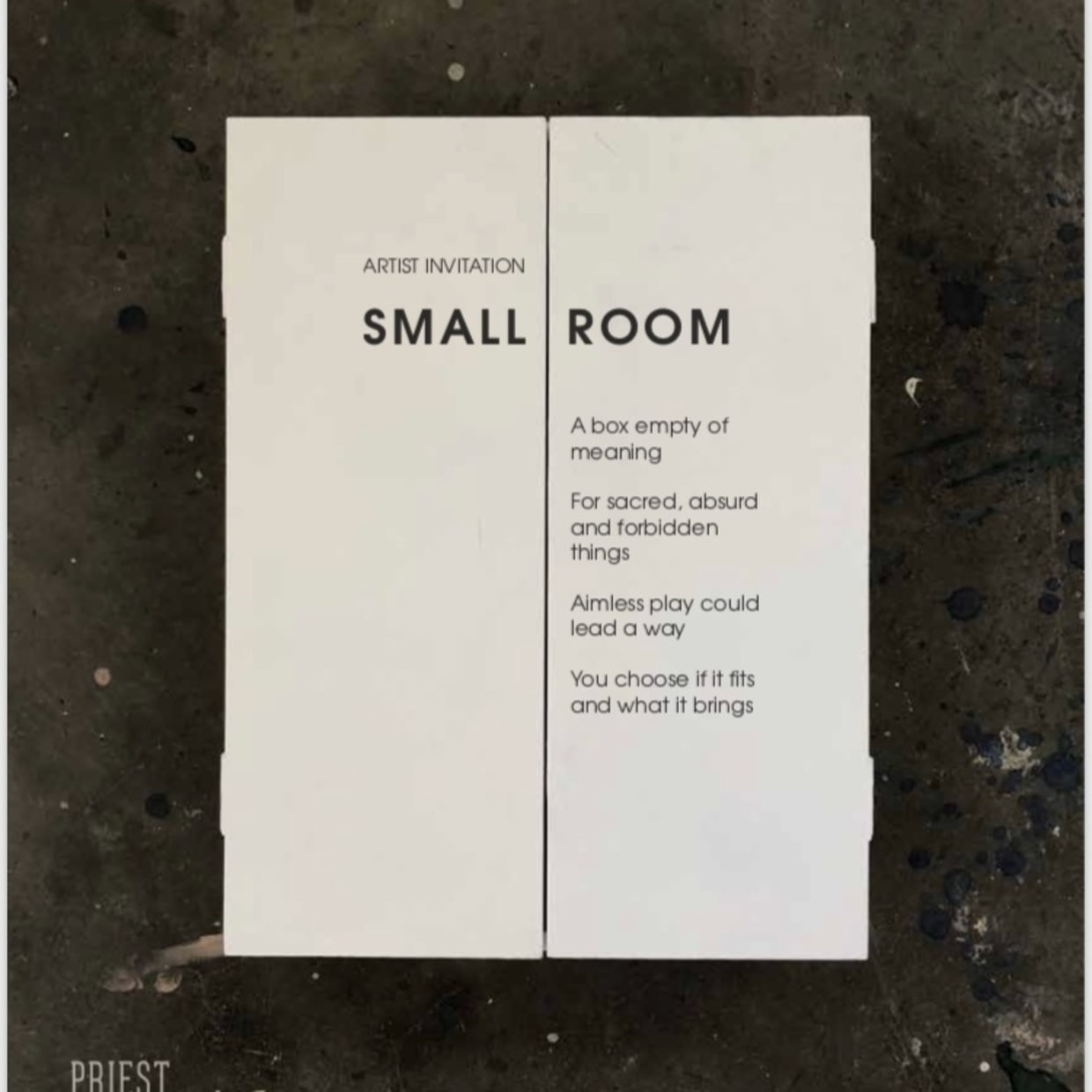 'SMALL ROOM' EXHIBITION AT PRIEST GALLERY