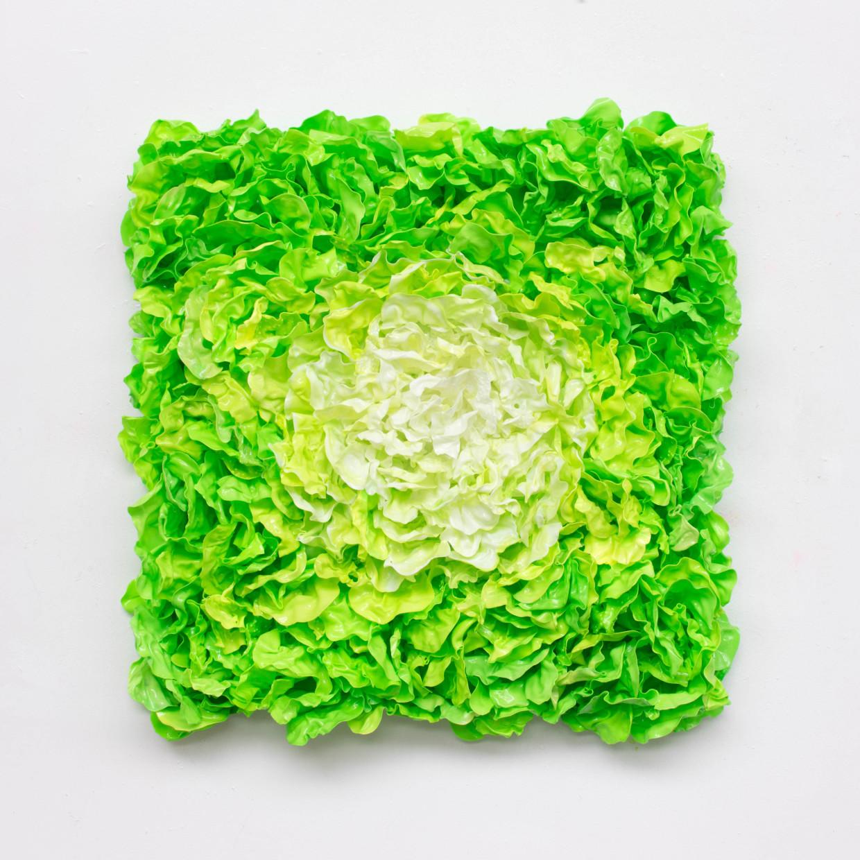 Lettuce, 2019