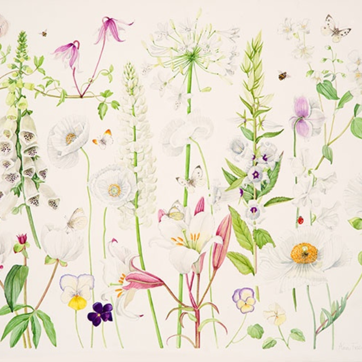 Ann Fraser: Art is the Flower - Life is the Green Leaf Petworth 7 - 18 May, London 21 - 23 May