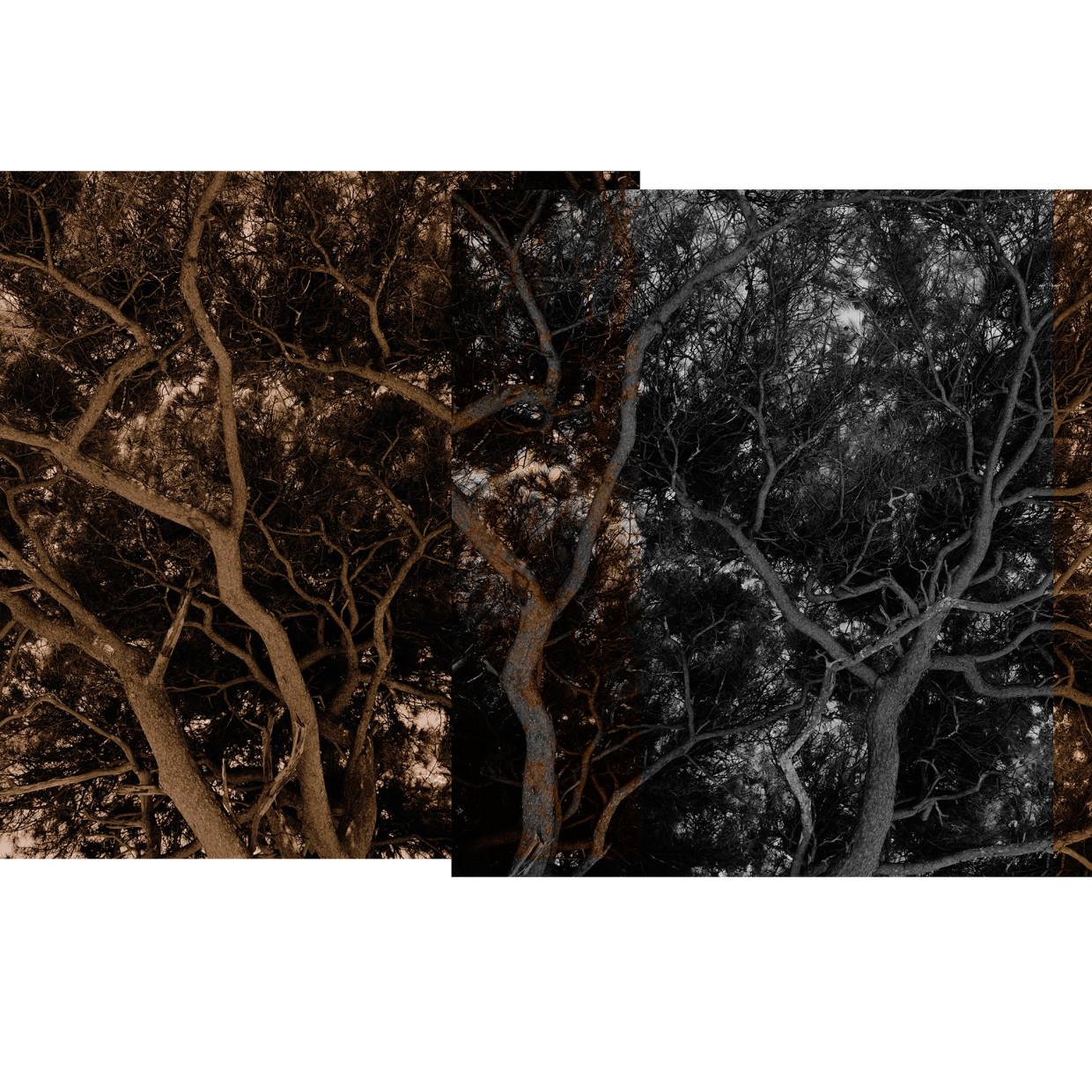 CARTOGRAPHIES OF LIGHT: NEW PHOTOGRAPHY FROM THE PHOTOGRAPHY DEPARTMENT OF LUXUN ACADEMY OF FINE ARTS Artists: Ao Guoxing, Feng Mengjin,...