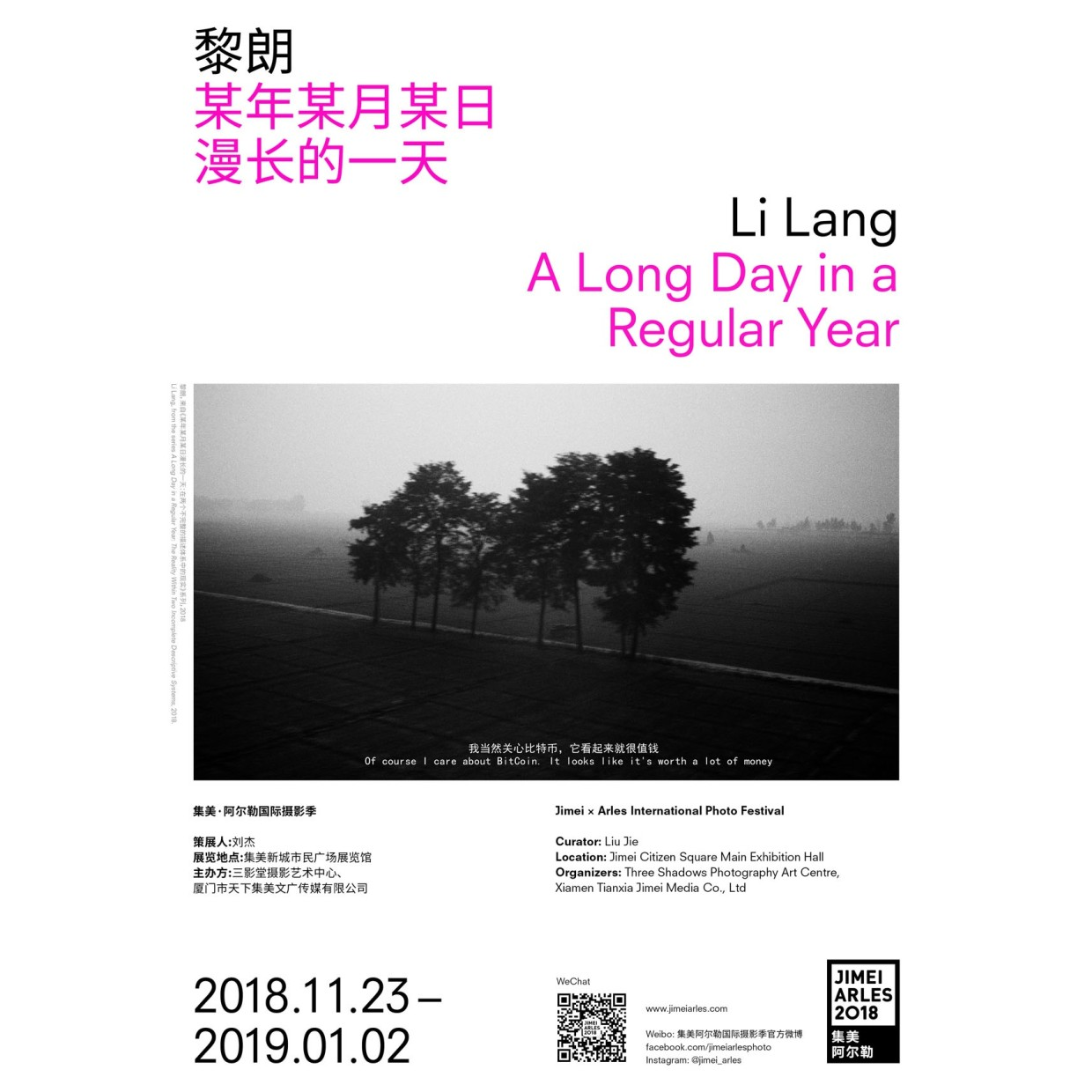 LI LANG A LONG DAY IN A REGULAR YEAR CURATED BY LIU JIE The work, A Long Day in a...