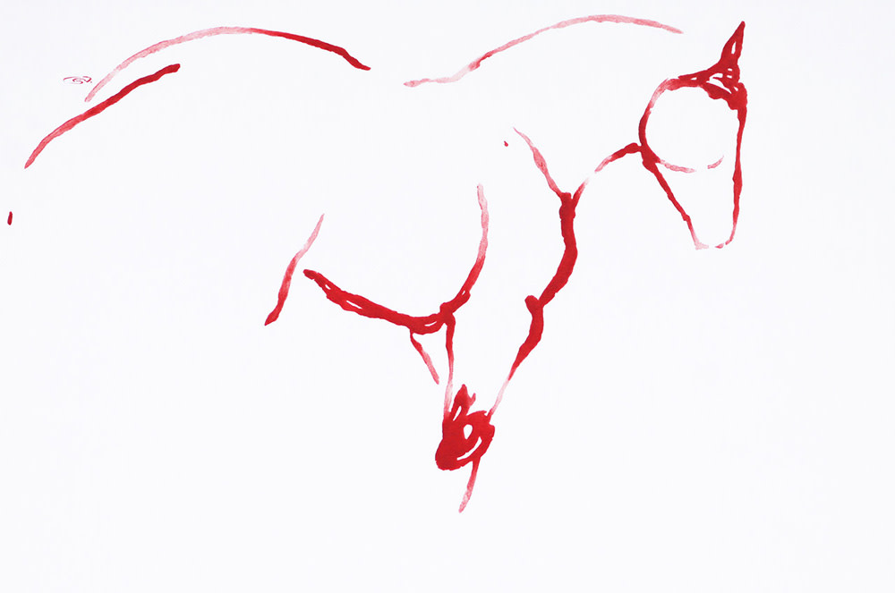 September Vhay: All The Red Horses and a Hummingbird