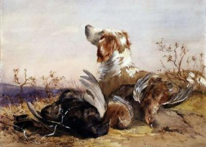 A spaniel with three grouse