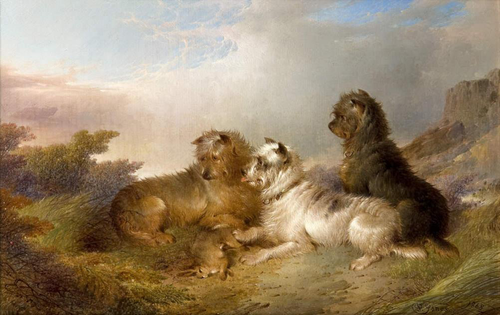 Terriers in a landscape
