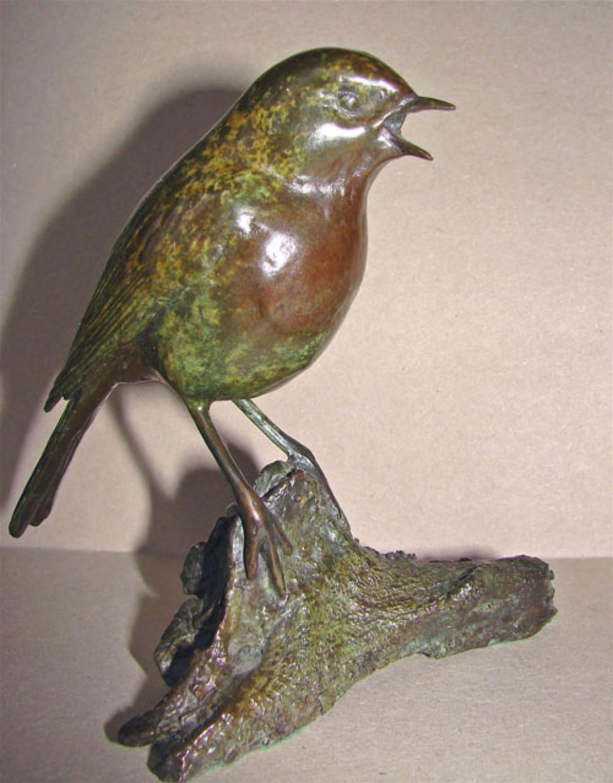 Robin 126/300