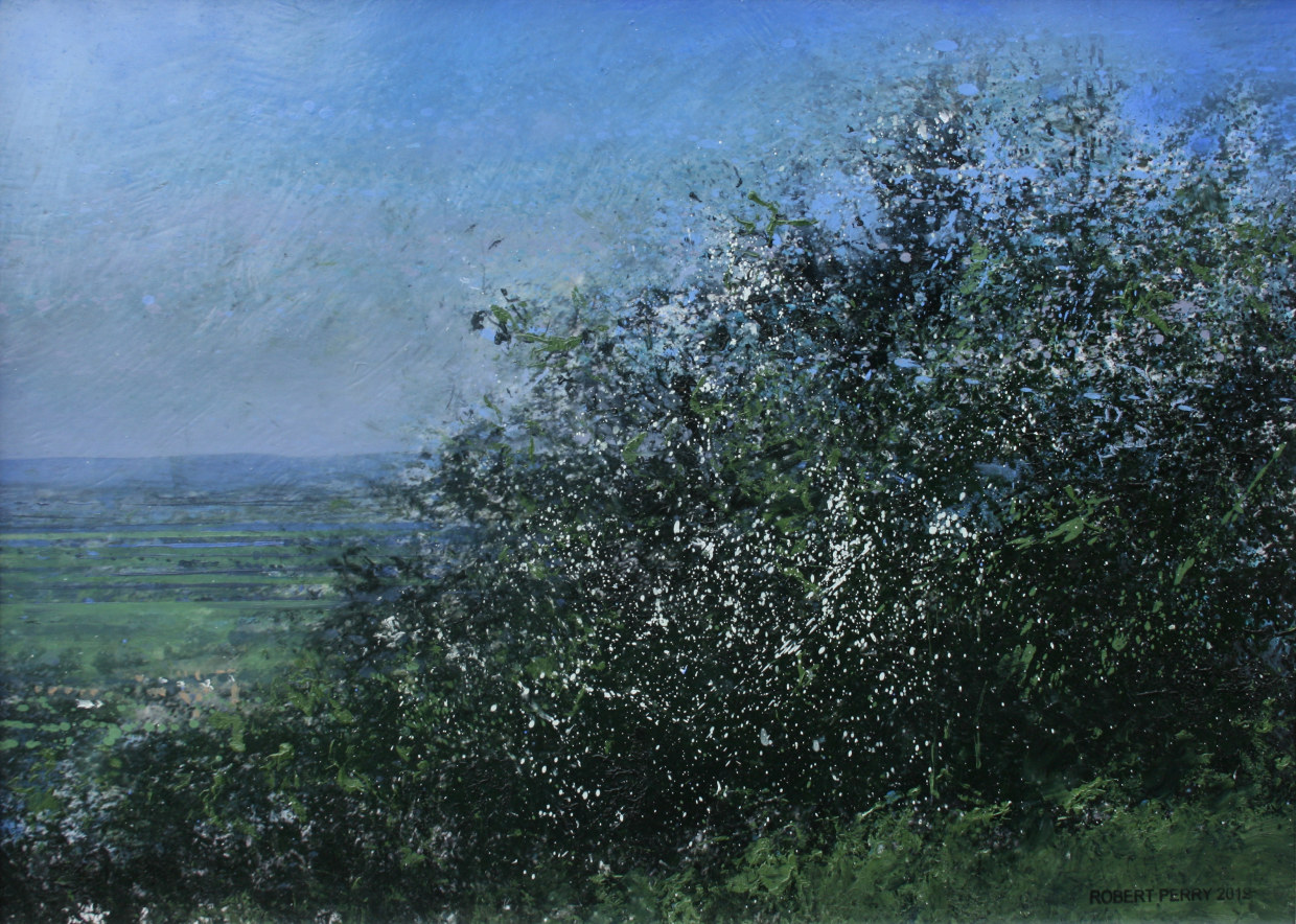 A glimpse of Saintbury through the May blossom on Willersey Hill