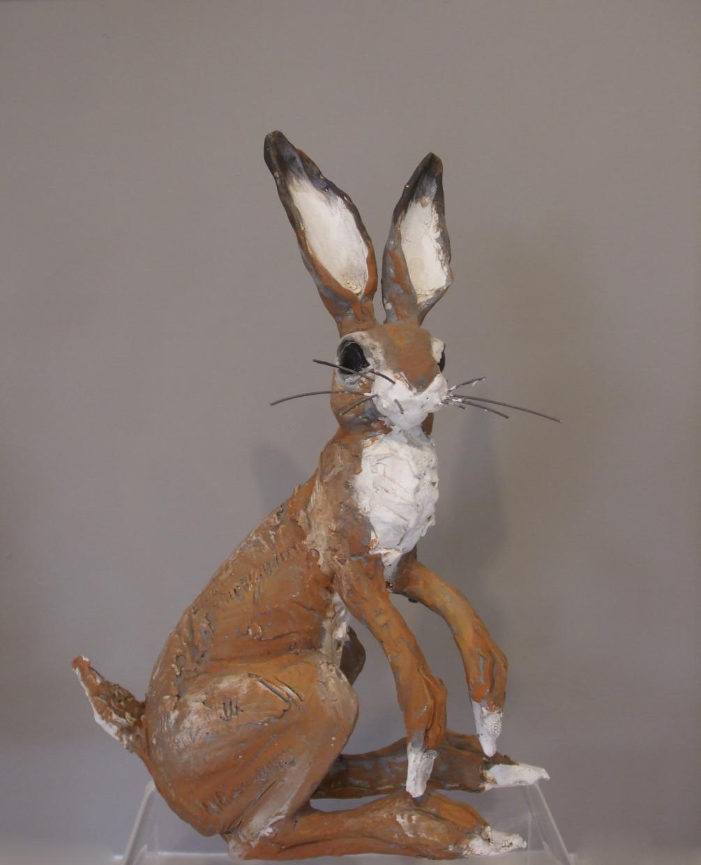 Sitting hare medium