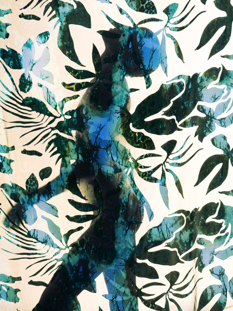 Carli Hermès, Distortion - Canopy, 2018