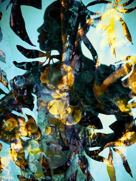 Carli Hermès, Distortion - Golden Silhouette, 2018