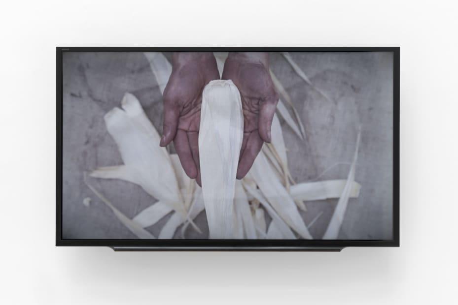 Lucía PIZZANI, La que viste la Piel (The One Who Wear the Skin), 2018