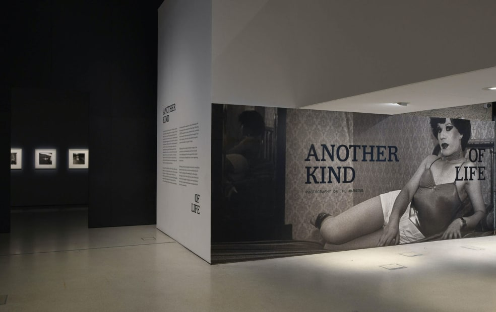 "Installation View of ""Another Kind of Life"" Barbican Gallery, London., 2018"