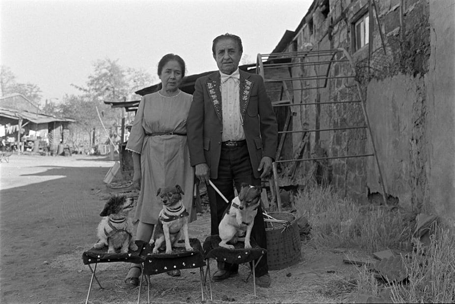 Paz ERRÁZURIZ, Adiestrador de perros, 1989