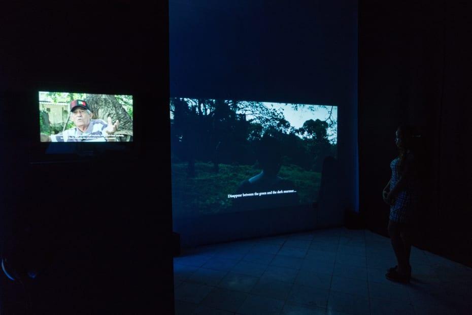 Installation View of 'La Memoria Verde' at the XIII Havana Biennial, 2019