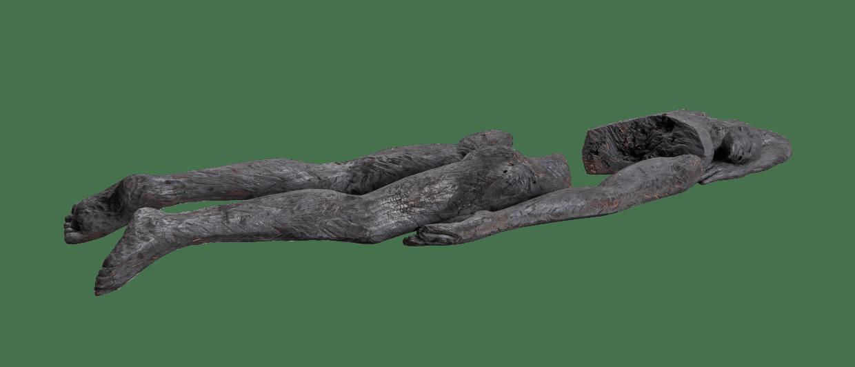 Jems Koko Bi, Le sommeil de l'arbre , 2021