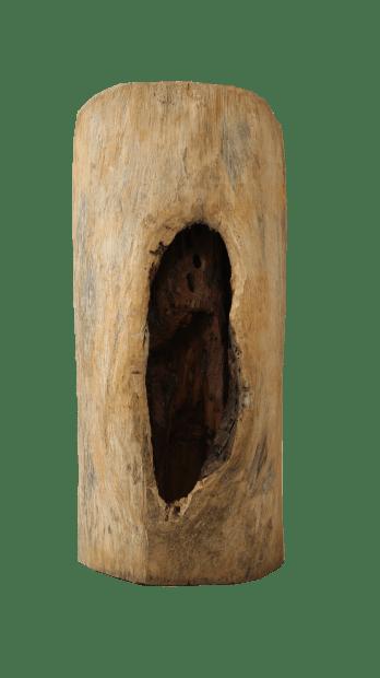 Soro Kafana, Au cœur du bois sacré, 2021