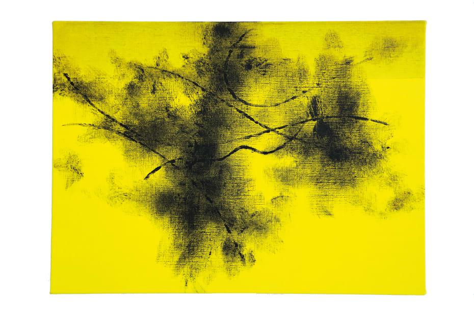 Koji Yamamoto, Vecchio Pino (giallo), 2016